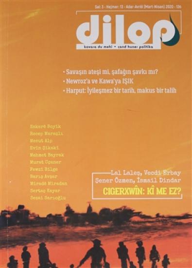 Dilop Dergisi Sayı: 13